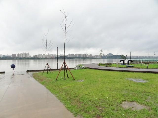 浸水した漢江(ハンガン) 増水中