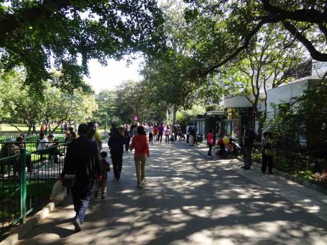 北京動物園 散歩