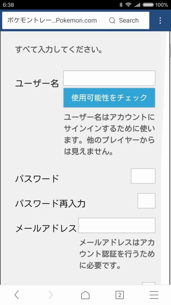 こちらもブラウザが対応してないフォームの形式らしい、使いづらいができなくはない