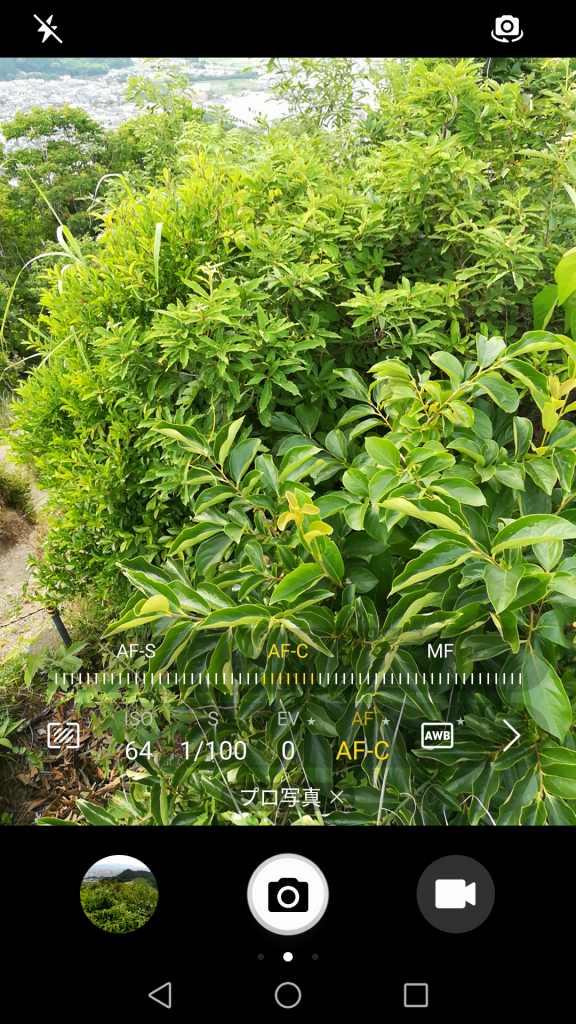 Huawei honor 6X カメラ機能 プロ写真 AF AF-C