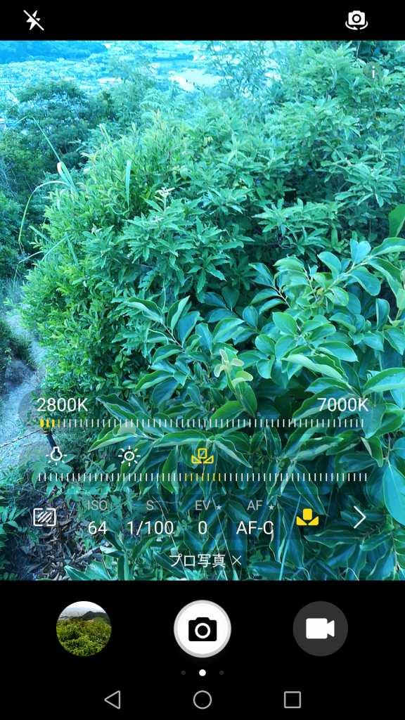 Huawei honor 6X カメラ機能 プロ写真 AWB 7000K
