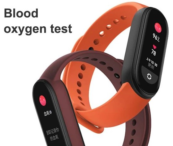 Blood Oxygen Monitor