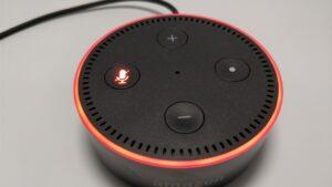 Amazon Echo Dot ミュート